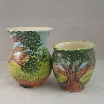 Bush pots - Di Turner_small